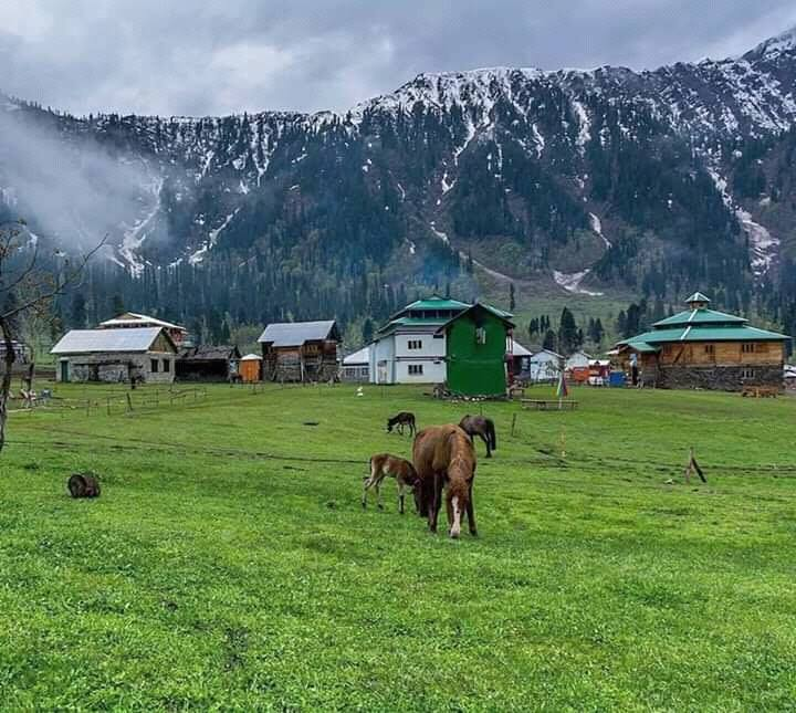 Pakistan Trips And Tours Specialists